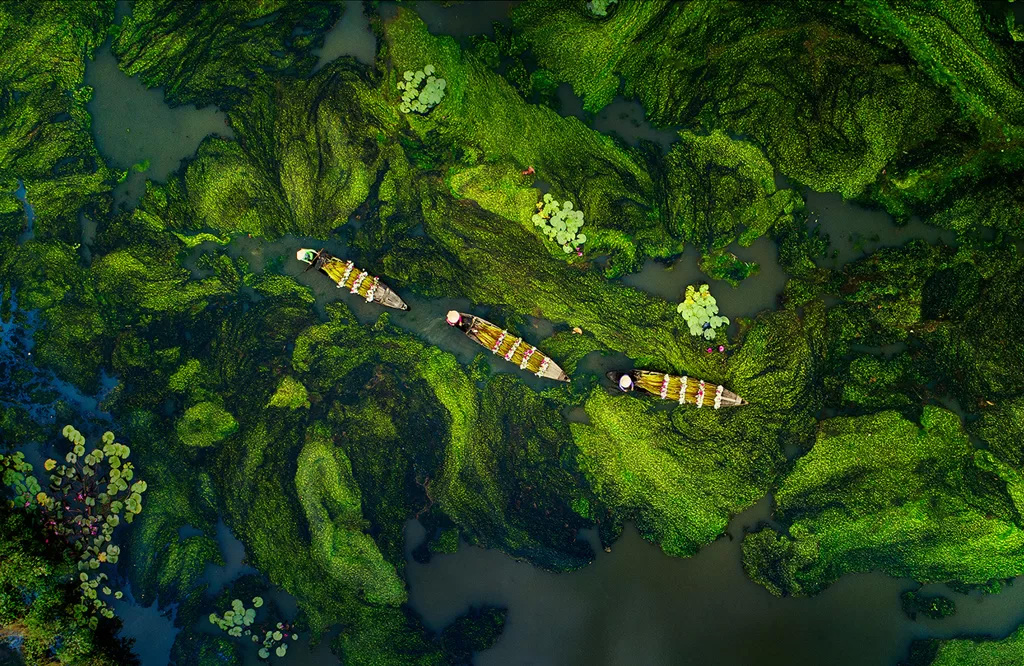 the western in floating season - Vietnam's landscapes from above, top winning photos.