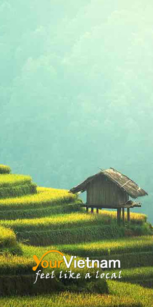 yourvietnam300x600 - 5 day trip destinations from Hanoi