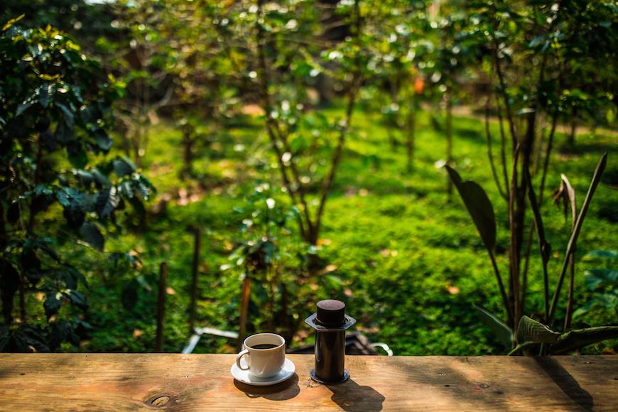In Da Lat, a tour for coffee lovers